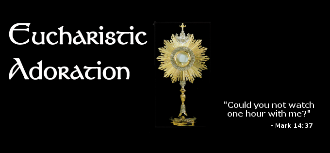Image result for eucharistic holy hour